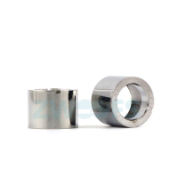 eGo Mini Beautyring